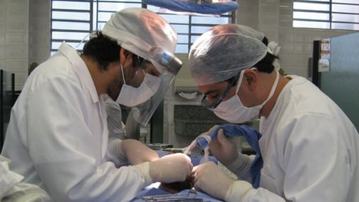 Fase de colocación de implantes dentales