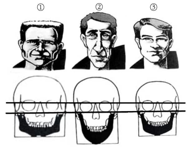 tipos de cara o patrones faciales