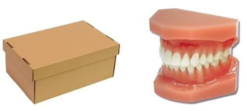 relación caja tapa de ortodoncia